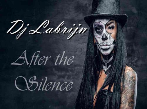 Dj Labrijn - After the Silence