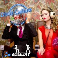Dsico Culture Vol.12